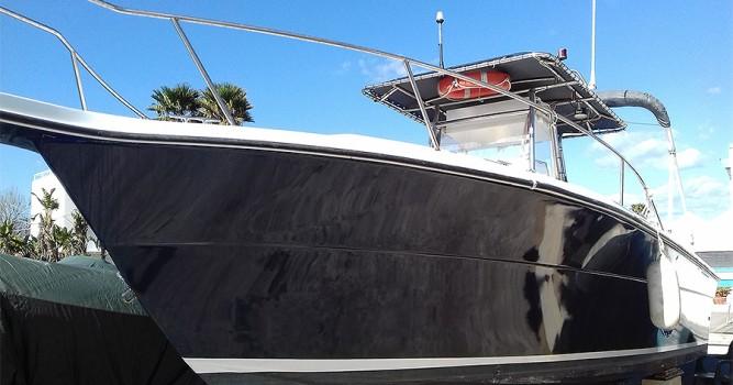 Angler Horizon 252 CC